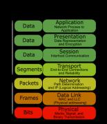 网络基础知识与实验(一)