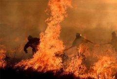 加强防范,愿四川凉山森林火灾的悲剧